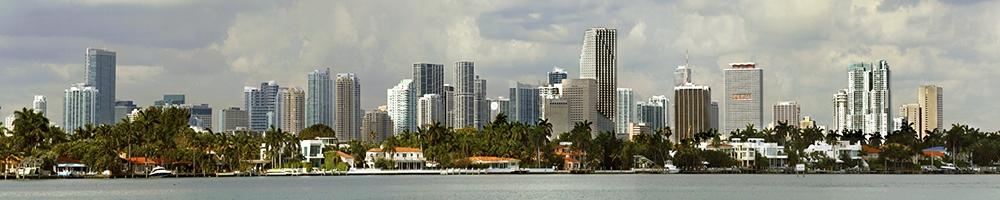 web Miami Downtown - Homes