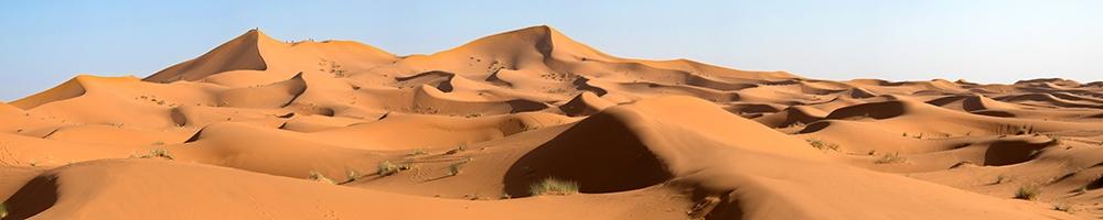 web Sahara Desert